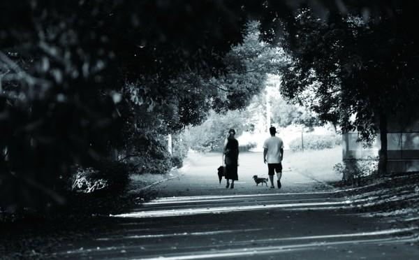 夫婦で楽しむ犬の散歩